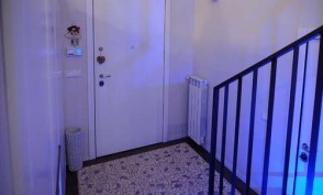 20. pavimento ingresso